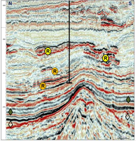 Seismic Over S Prospect