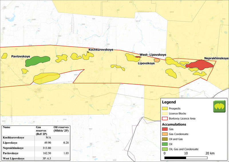 Prospects and Accumulations in the Bortovoy Licence