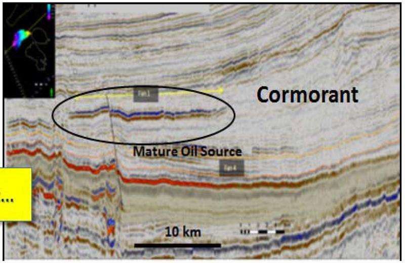SW-NE Seismic Line over the Cormorant Prospect